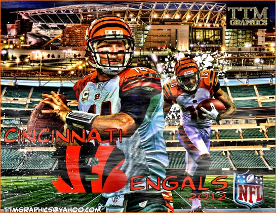 The Cincinnati Bengals should be the best of the AFC North in 2013.