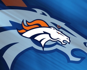 2014 AFC Champions will be the Denver Broncos