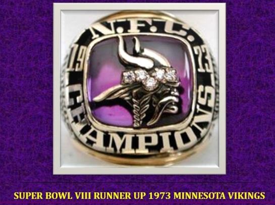 Bowl VIII
